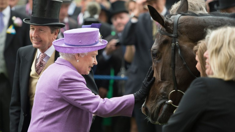 The Queen greets her 2013 Gold Cup winner Estimate, whose first foal Calculation makes his debut at Sandown