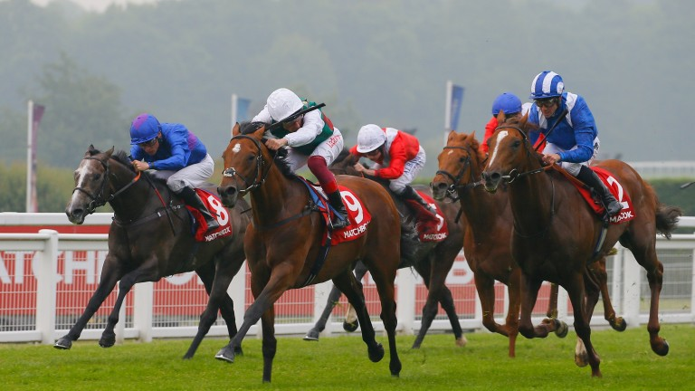 Vintager (far left) finishing third to Without Parole at Sandown