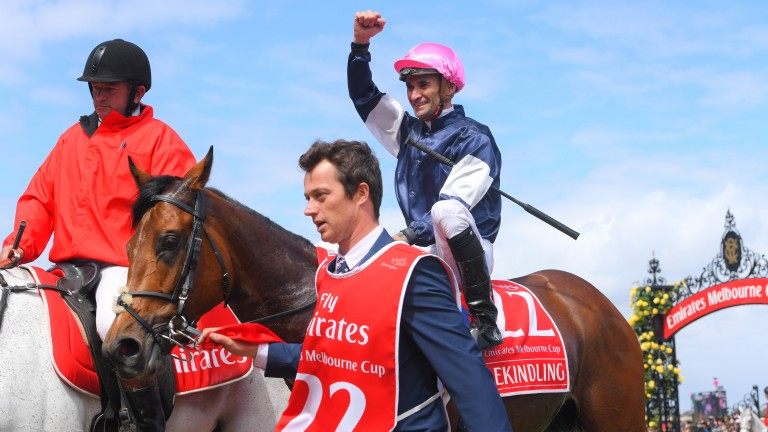 Rekindling: won the Melbourne Cup last year for Joseph O'Brien and Corey Brown