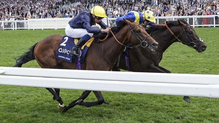 Crystal Ocean (nearside) could line up against Arc heroine Enable in the September Stakes