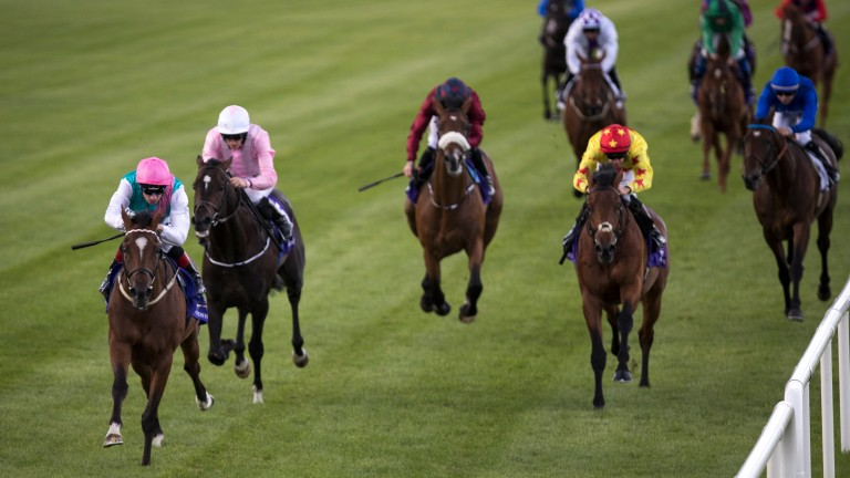 Centroid (left) spreadeagles the field at Leopardstown on debut