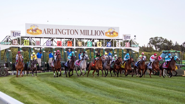 Chicago's signature race: the field exits the starting gate for last year's Arlington Million, won by Beach Patrol (drawn ten, turquoise silks)