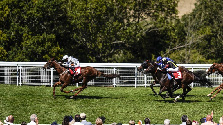 Communique wins convincingly at Goodwood last time and is sure to have his supporters today