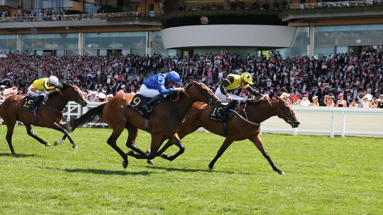 La Pelosa (blue) pictured finishing second to Main Edition in the Albany Stakes at Royal Ascot