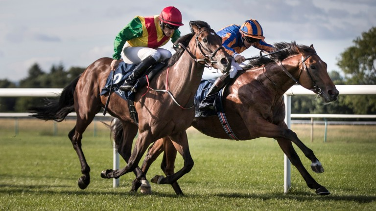 Christmas (right) sticks his neck out to win the Caravaggio Stakes