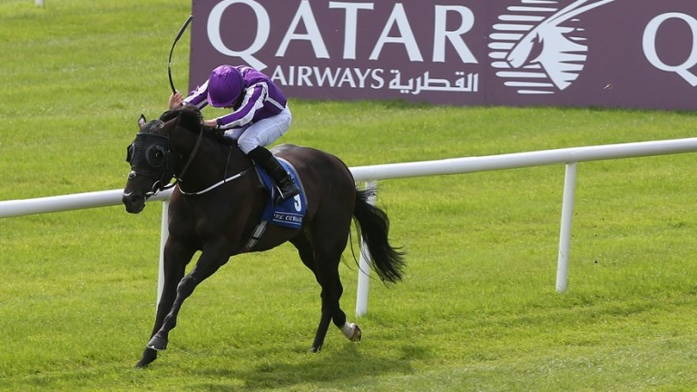 Spirit Of Valor drops a furlong in trip after finishing sixth in the Lennox Stakes last time