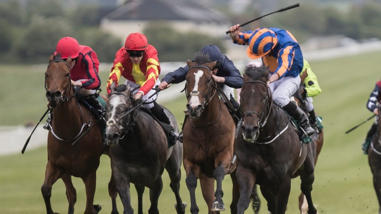 Stablemates Now You're Talking (furthest left) and Speak In Colours (red and yellow) chasing home Sioux Nation (furthest right) and July Cup third Fleet Review in Naas' Lacken Stakes
