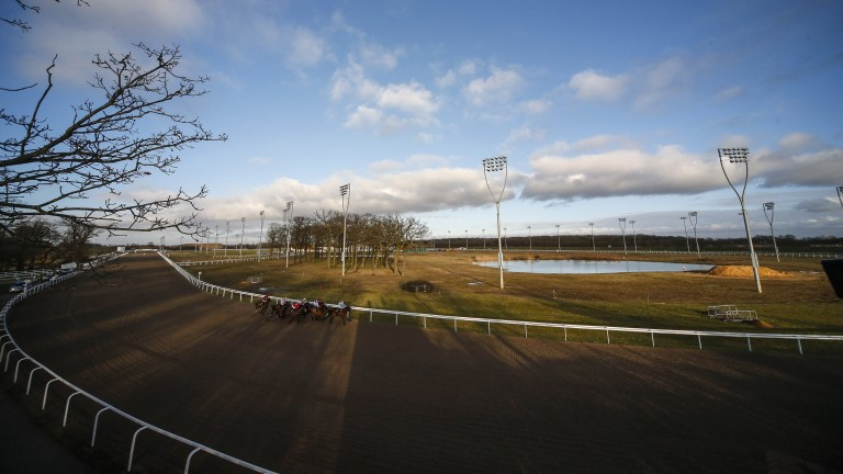 Chelmsford's Thursday evening card hasn't attracted the number of runners it warrants