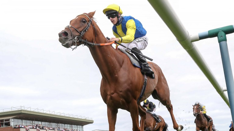 Teodoro: Rose of Lancaster winner is 9lb well-in