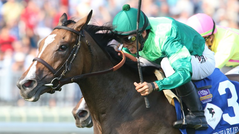 Sistercharlie (John Velazquez) holds Chad Brown-trained stablemate Fourstar Crook to win the Grade 1 Beverly D at Arlington