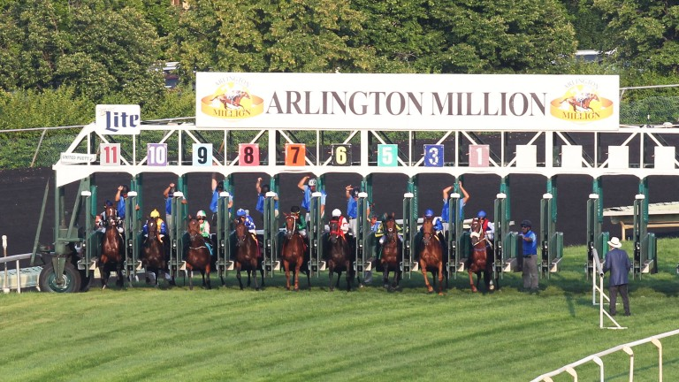 Out of the gate: the Arlington Million field exits the starting gate for the 36th running of Chicago's signature contest