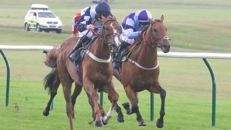 Glasses Up and Paddy Mathers winning at Ayr last month