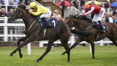 Gallovie (Hollie Doyle) wins the novice auction stakes at Windsor on Sunday with third-placed Antonia Clara chasing