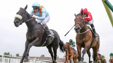 Beechwood Ella battles home in the opener under Tony Hamilton Photograph by Grossick Racing Photography 0771 046 1723