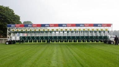 York's new 22-bay set of starting stalls will be used for next year's Ebor