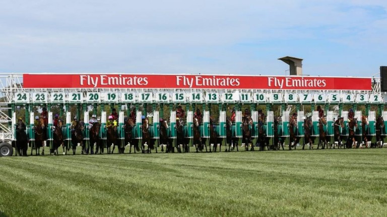 Steriline, which produced the bespoke York stalls, also manufactured the 25-gate used to start the Melbourne Cup, although the race limits itself to 24 runners
