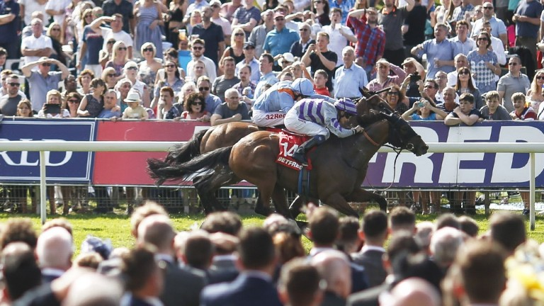 Nakeeta: Bids to become first back-to-back winner of the Ebor since 1923