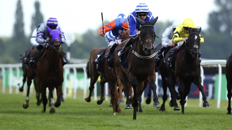 Stratum: powered to victory at Newbury last month