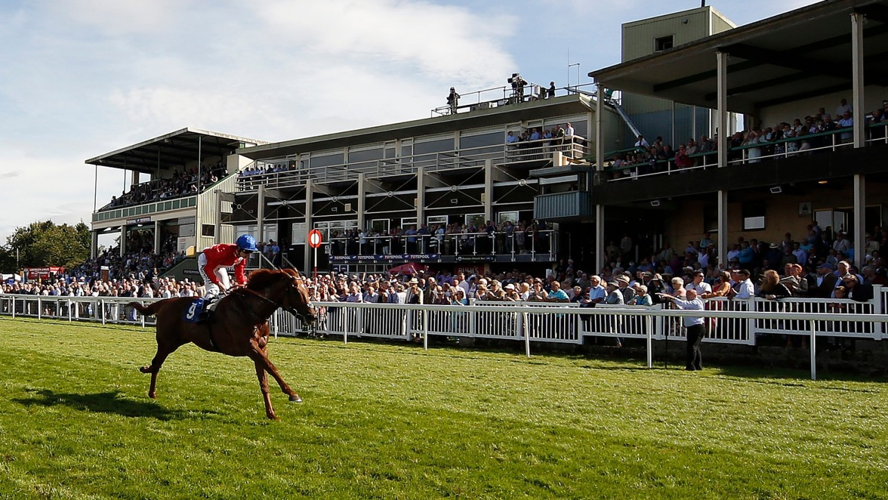 Wednesday free racing tips: our experts give their best bets