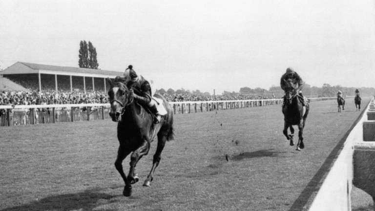 The moment Yorkshire's heart broke: Roberto hands Brigadier Gerard his first - and only - defeat