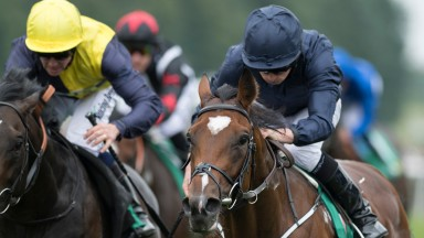 Gustav Klimt is the headline horse on a day of Group action at Newbury