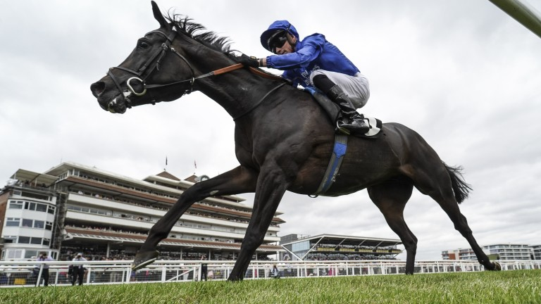 James Doyle and Hamada win at Newbury to set up a possible Melbourne Cup bid for the Godolphin gelding