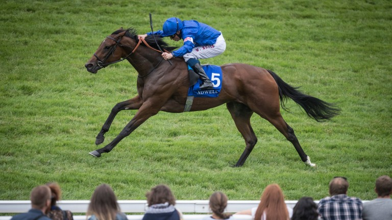 Beyond Reason and William Buick winning the Shadwell Prix du Calvados