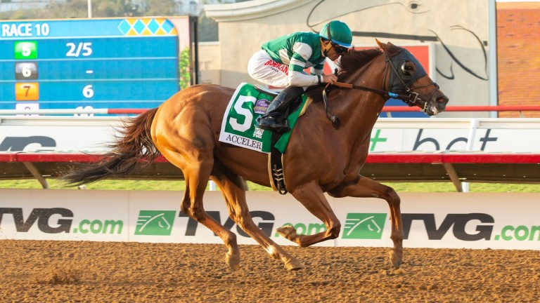 Accelerate: was an emphatic winner of the Pacific Classic