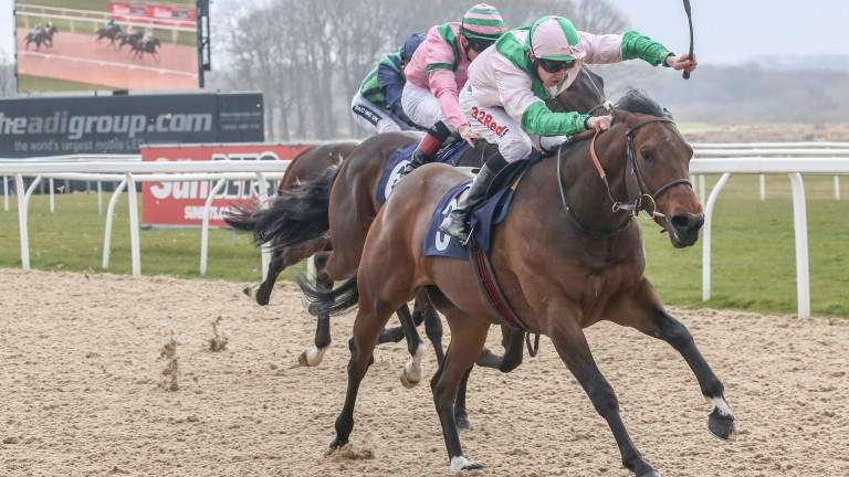 Cowboy Soldier recorded a first career win at Newcastle in March