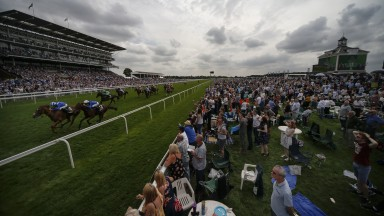 York racecourse: hosting the four-day Ebor meeting this week