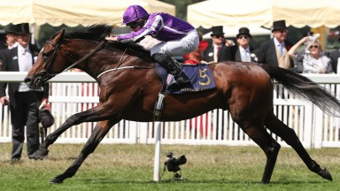 Kew Gardens and Ryan Moore winning the Queen's Vase at Royal Ascot