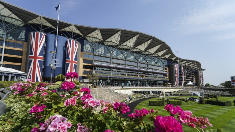 Ascot is one of six tracks racing on Friday