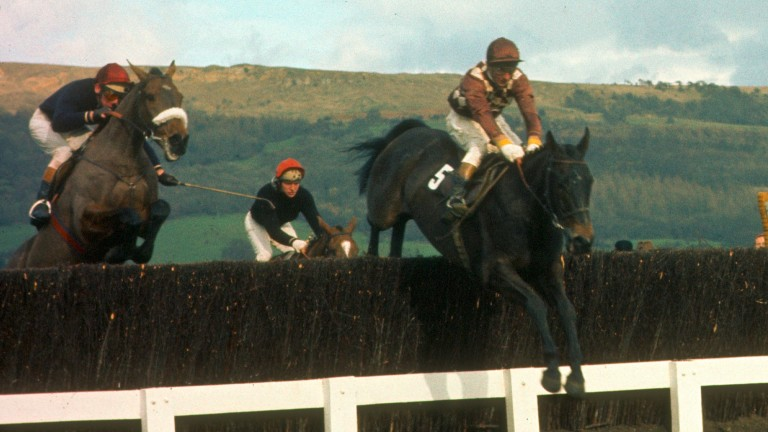 Davy Lad (right) and Dessie Hughes win the 1977 Cheltenham Gold Cup from Tied Cottage and Summerville