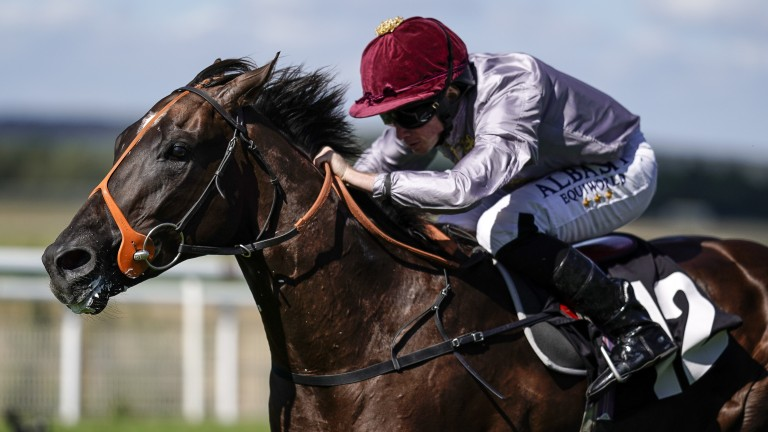 Ryan Moore punches Watan clear at the end of a Goodwood maiden last month