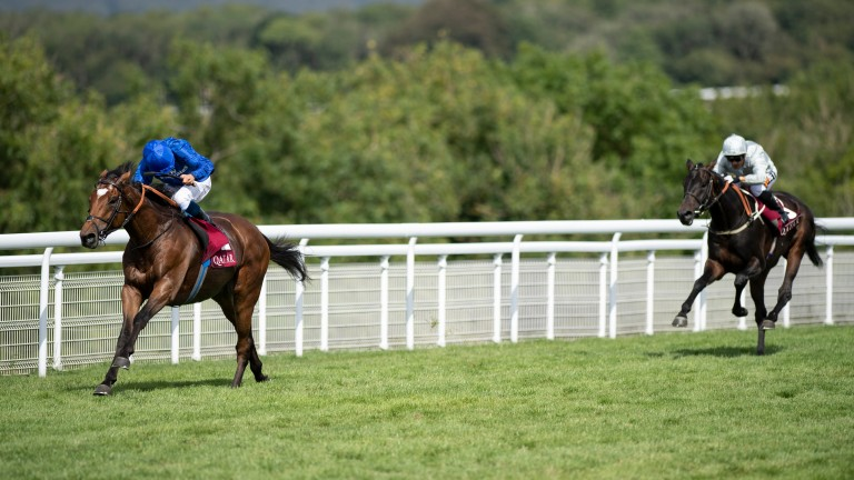 Cross Counter: an impressive winner of the Gordon Stakes