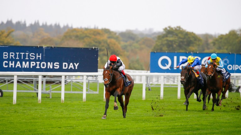 Cracksman (Frankie Dettori) at his imperious best, beating Poet's Word (yellow cap) by seven lengths in the Qipco Champion Stakes at Ascot last October