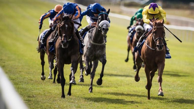 Sea Of Class (James Doyle, right) beats Forever Together in the Darley Irish Oaks at the Curragh