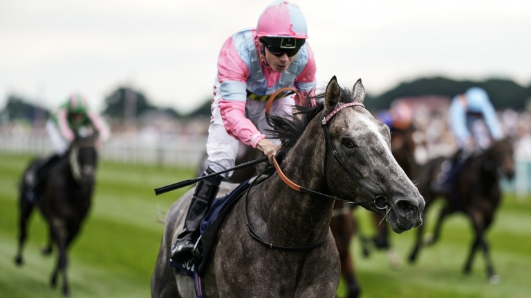 Phoenix Of Spain: impressed when winning the Group 3 Acomb Stakes