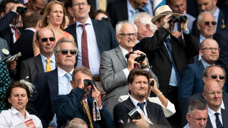 Sir Michael Stoute (sunglasses, blue tie) has cause to be watching anxiously as Poet's Word finds trouble in running