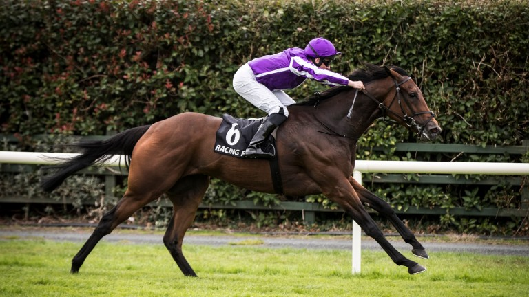 I Can Fly: an impressive winner of the Racing Post Vincent O'Brien Ruby Stakes at Killarney