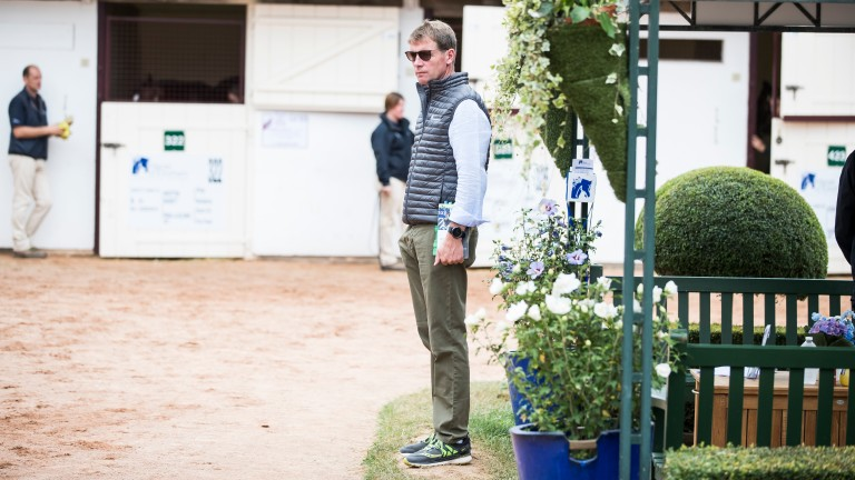 "David Redvers: ""It's a very personal thing buying horses"""