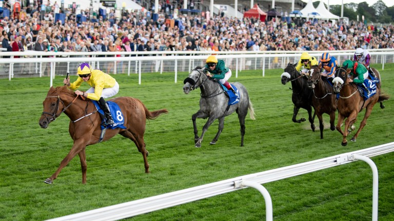 Sea Of Class: flew home to land the Yorkshire Oaks