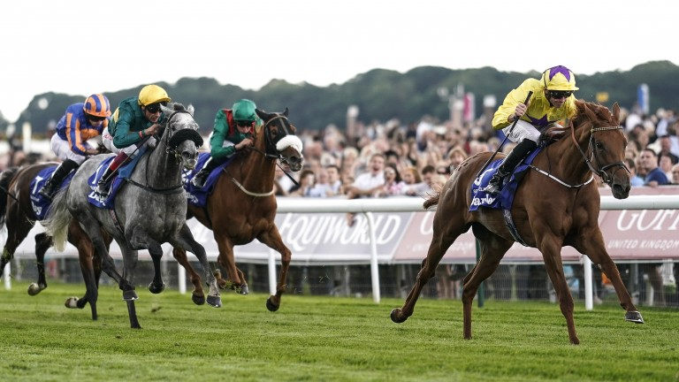 Sea Of Class slips the field in the Yorkshire Oaks