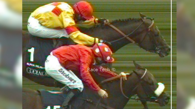 That's close: Alpha Delphini (top) edges out Mabs Cross in the Nunthorpe