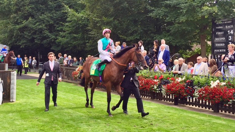 Sangarius and James Doyle after making a winning debut at Newmarket