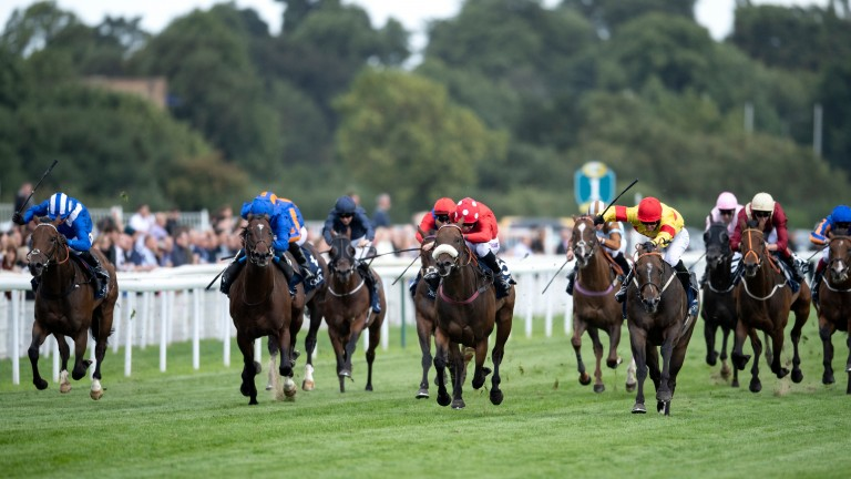 Battaash (far left) cannot go with Alpha Delpini, Mabs Cross and Blue Point as things get serious in the Coolmore Nunthope