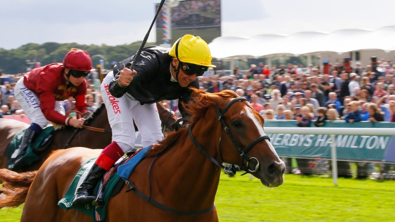 Stradivarius: becomes a stayer in a million with Lonsdale Cup victory
