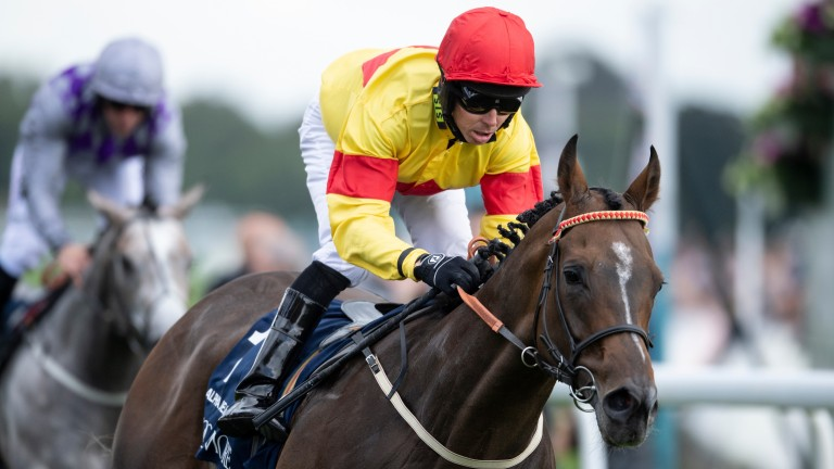 Alpha Delphini the second 5f Group 1 winner out of Easy To Imagine