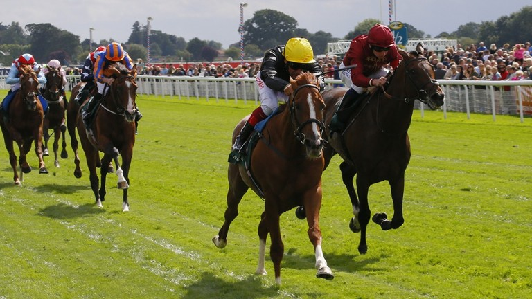 Stradivarius lands the million pound bonus for Flat stayers with victory in the Lonsdale Cup