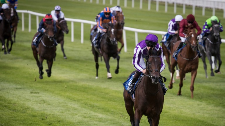 Ten Sovereigns was a seven-length winner of a maiden at the Curragh on Sunday